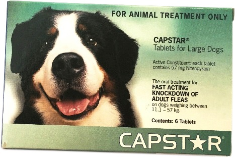 Capstar for lge dogs