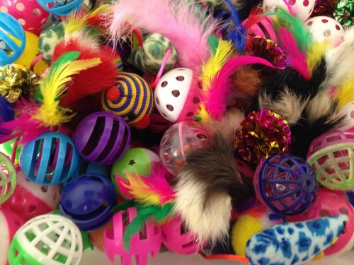 cat toy grab bag